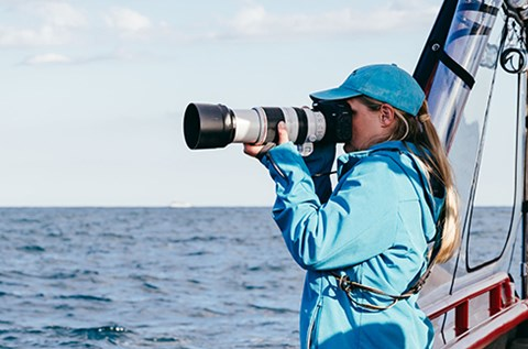 lisa skelton photography whale photographer port stephens