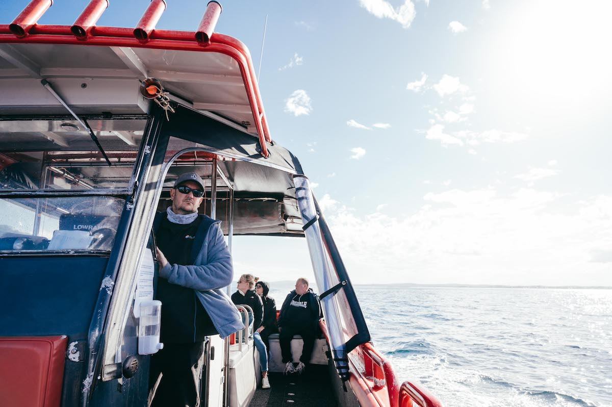 aquamarine adventures whale watching port stephens