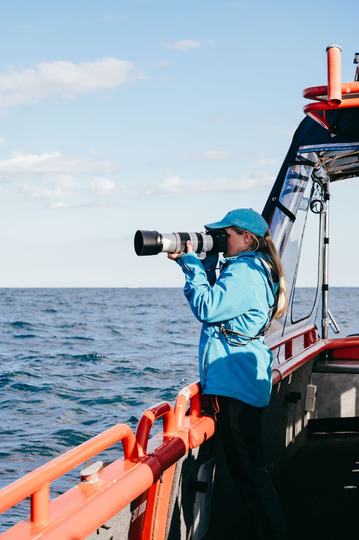 lisa skelton photographer port stephens whale watching