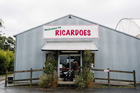 ricardoes tomatoes strawberry tomato farm port macquarie
