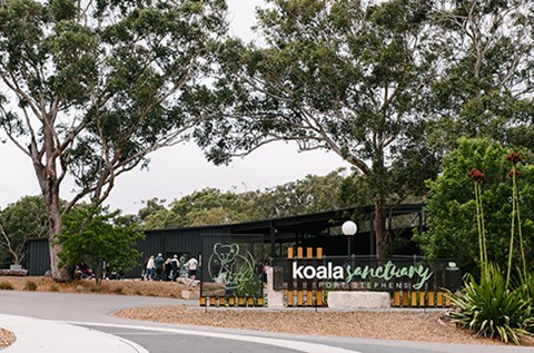 port stephens koala sanctuary one mile things to do