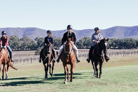 murchessons equine horse riding tours hunter valley