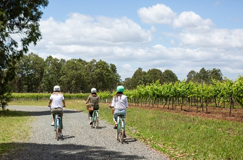 sutton-estate-electric-bicycle-hire-hunter-valley