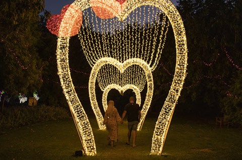hunter valley gardens christmas lights spectacular love heart nsw